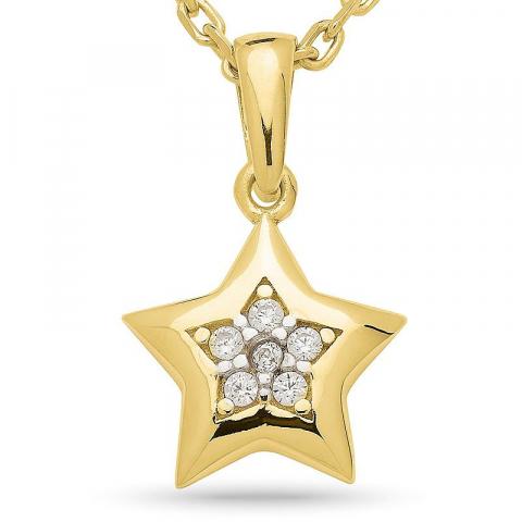 Tähti zirkoni riipus jossa on ketju  kultapäällystetty hopea